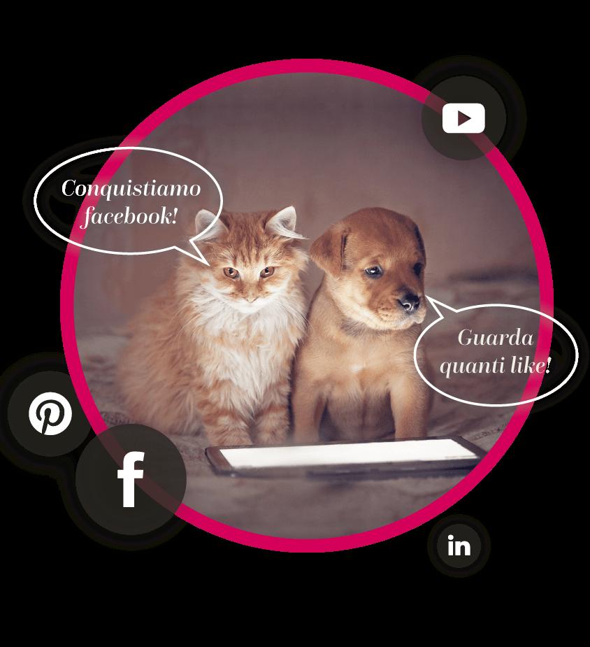 06 social management - BE Comunicazioni - loghi cani e gatti